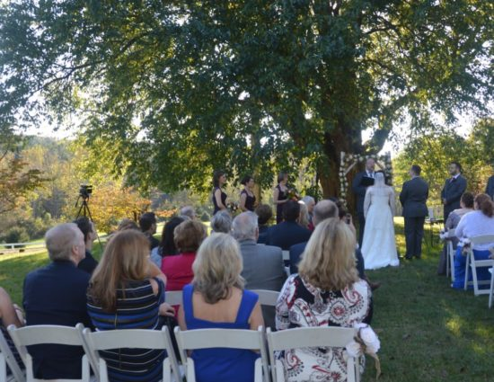 Wedding ceremony outside near large tree with bride in white dress and groom in gray suit