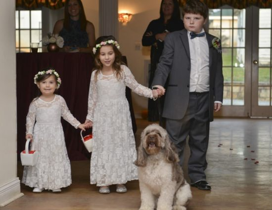 Ring bearer in gray suit, two flower girls in white dresses, and white and gray dog standing at entry way