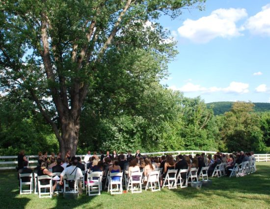 Wedding ceremony in front of large tree with green leaves with bride in white dress and groom in black suit