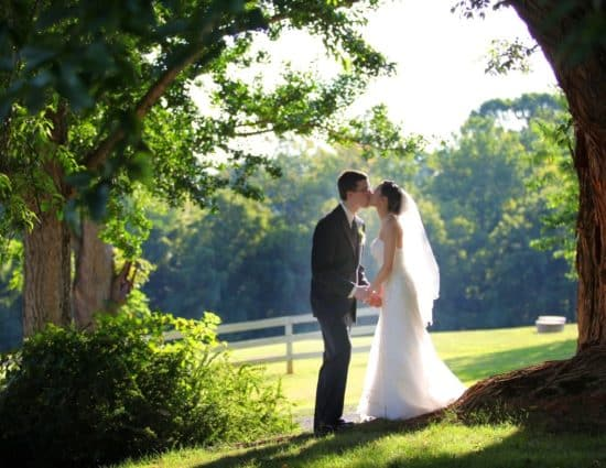 Bride with white dress and groom with gray suit standing by large tree with green leaves