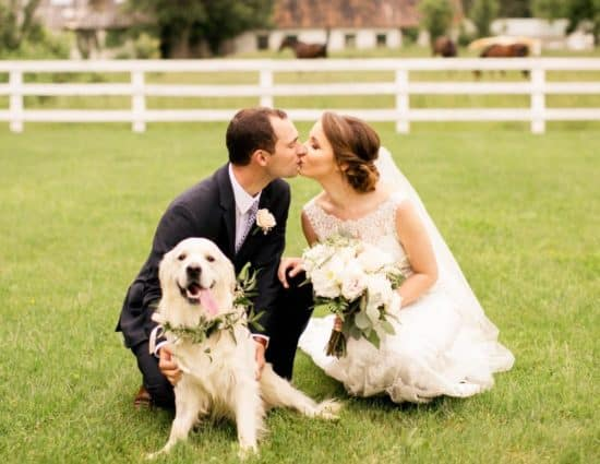 Bride with white dress and groom with black suit kissing with white dog nearby and white fence and horses in the background
