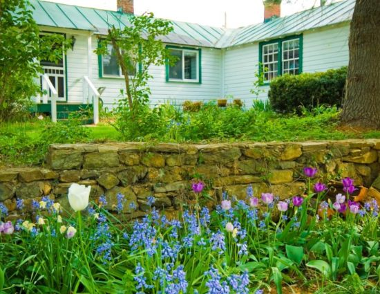 Cottage painted white with green trim surrounded by green grass and white, purple, and blue flowers