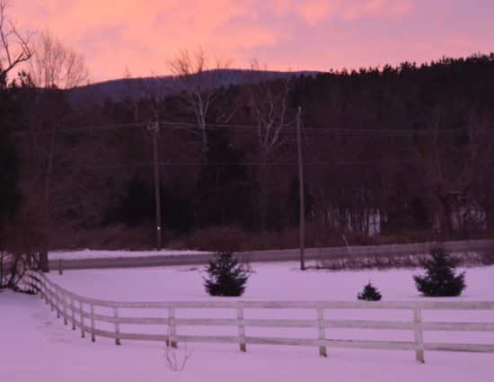 Grounds covered in snow with sun setting leaving a light pink sky