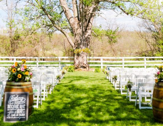 Wedding ceremony with white chairs set up in front of large tree