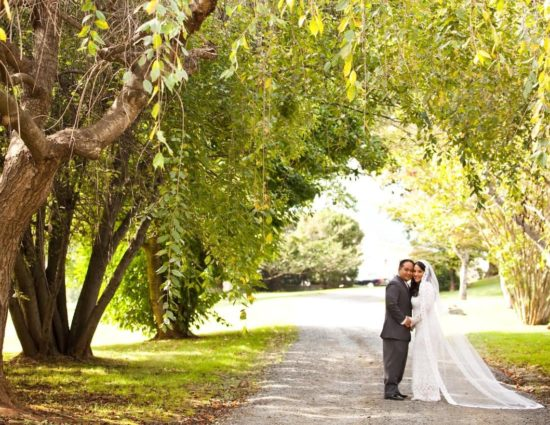 Bride in white dress and groom in gray suit standing on gravel road surrounded by large trees with green leaves