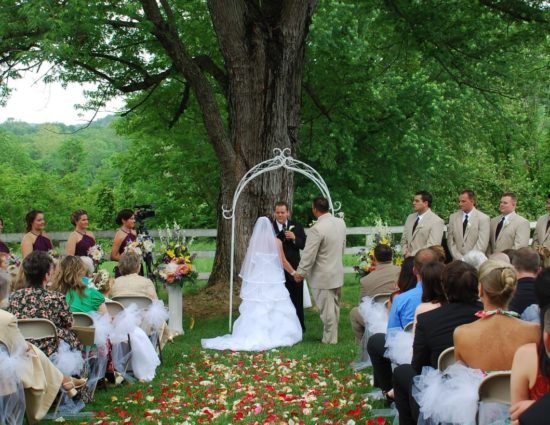 Wedding ceremony with bride in white dress and groom in light tan suit standing in front of large tree