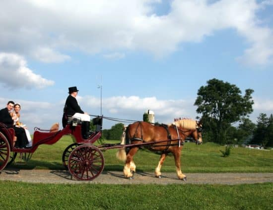 Bride in white dress and groom in black suit riding in buggy pulled by brown horse