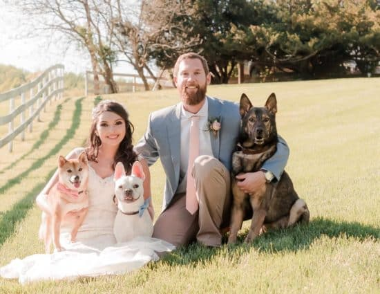 Bride with white dress and groom with gray and tan suit sitting in green grass with a light brown dog, white dog, and brown and tan dog
