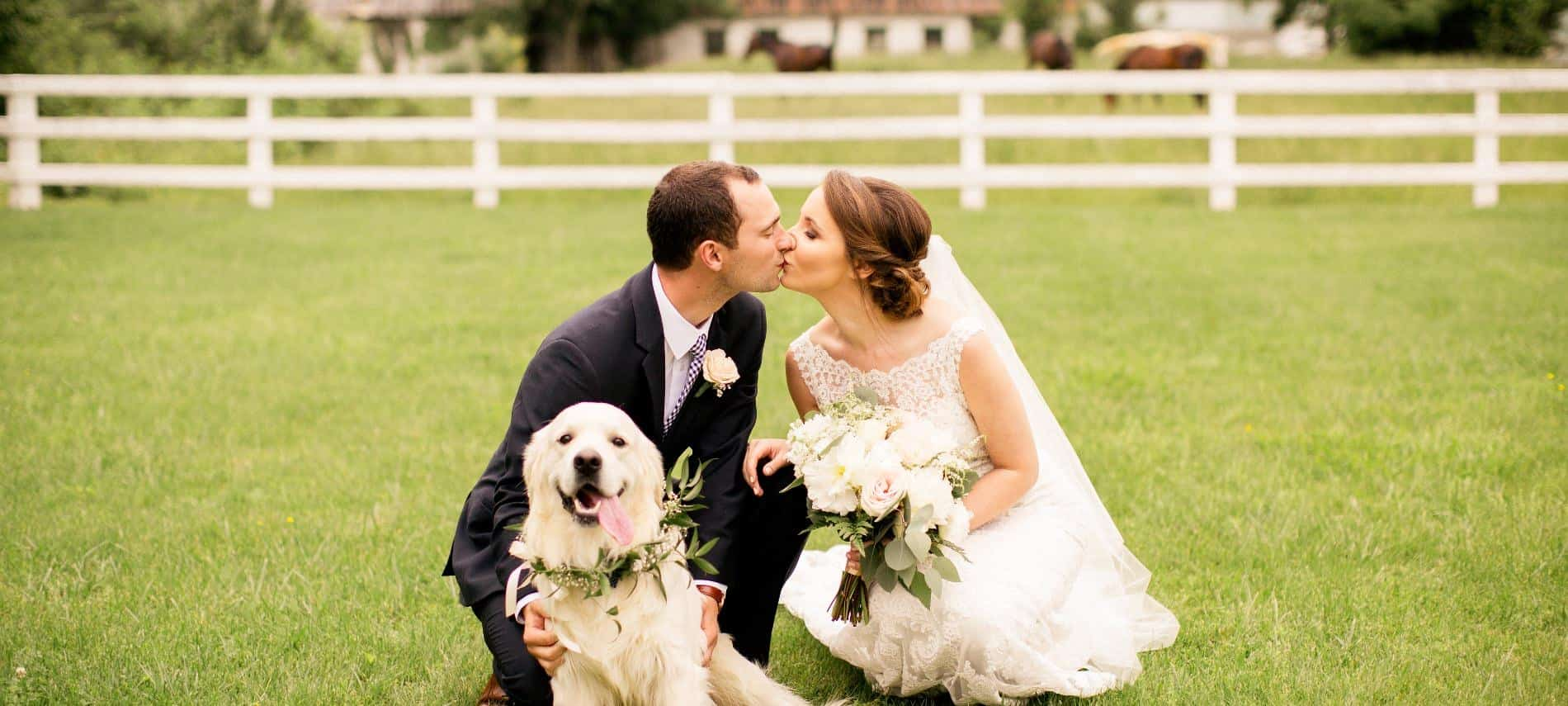 Bride with white wedding dress and groom with black suit kneeling down and kissing with white dog sitting nearby