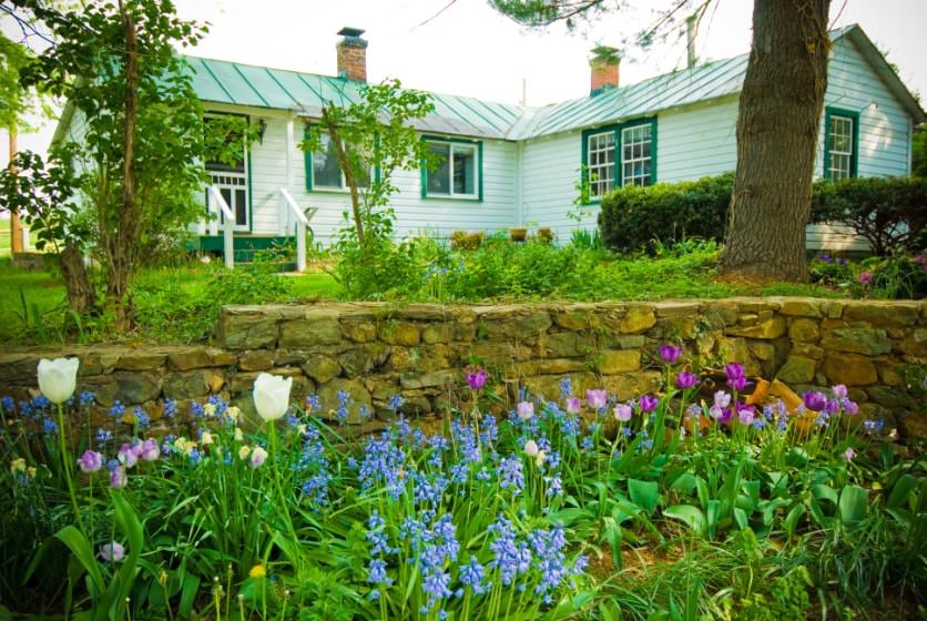 Exterior view of cottage painted white with green trim surrounded by green grass and shrubs, a stone retaining wall, and white, purple, and blue flowers